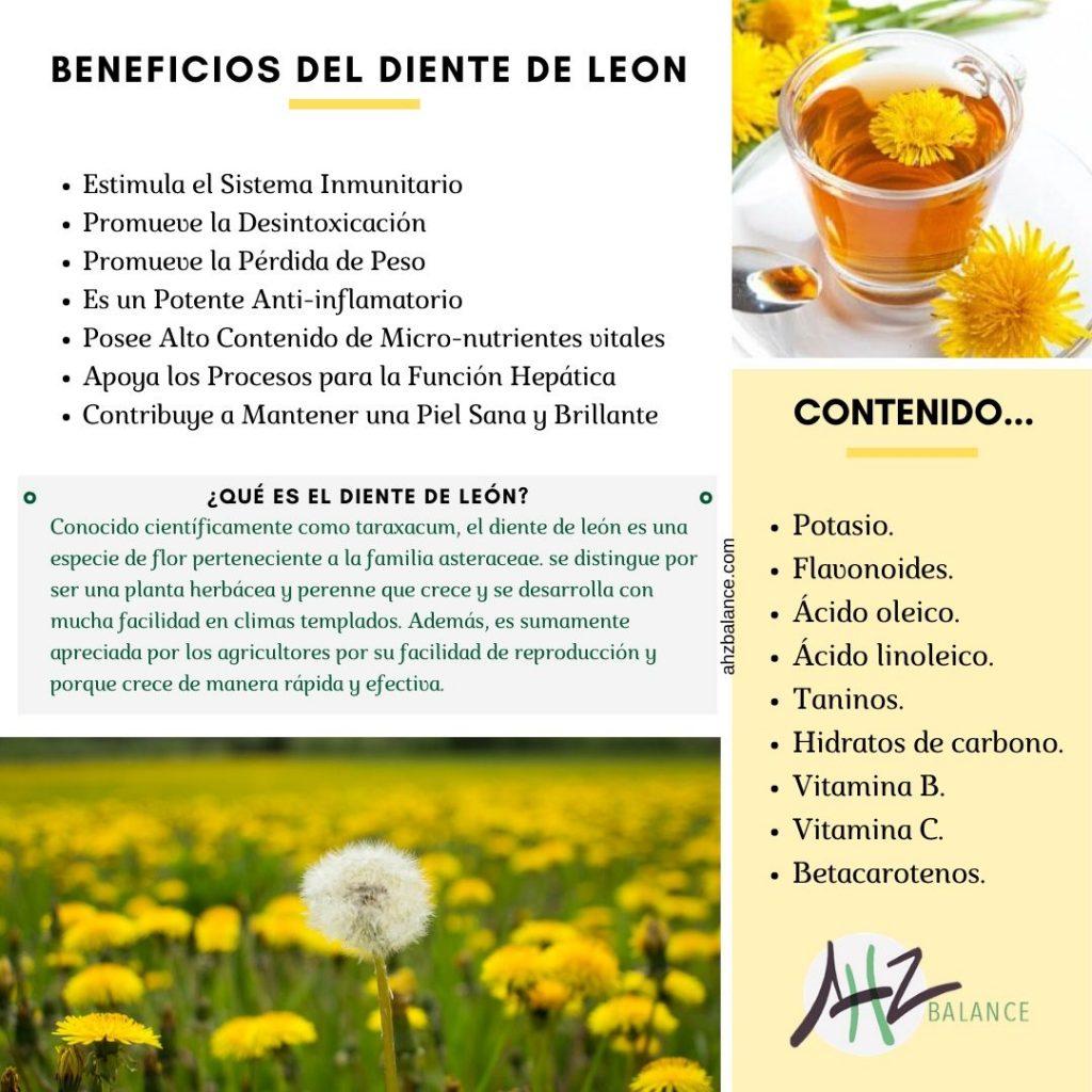l diente de león posee un gran número de propiedades para la salud, aunque suele ser  utilizada como una planta ornamental debido a sus flores.